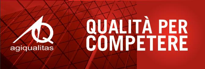 Il modello TQM in ottica ISO 9001:2015: laboratorio Scuola e Socio Assistenziali